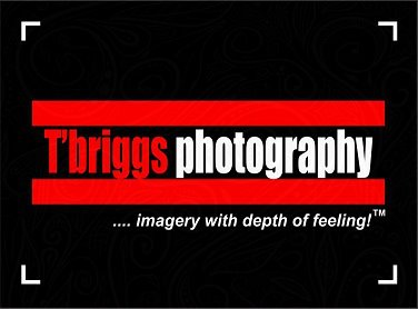 T'briggs Photography
